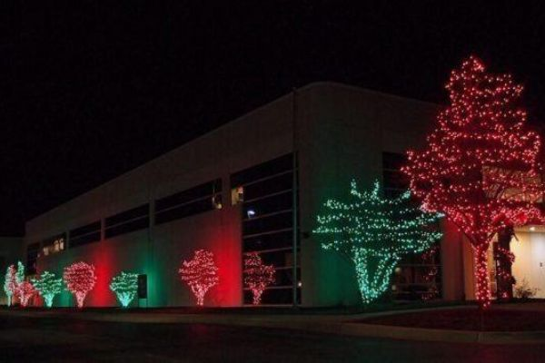 christmas light installation commercial trees wilmington nc 01